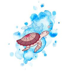 Sea and turtle