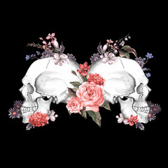 Roses and Skull, Day of The Dead, Vector illustration