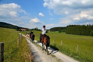Foto op Aluminium Paardrijden Mädchen und Pferde beim Ausritt in Natur