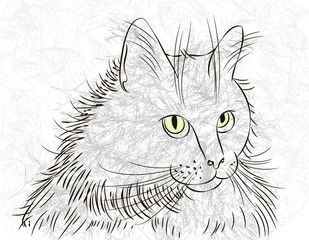 Canvas Prints Hand drawn Sketch of animals cat ink