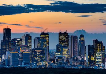 Beautiful Silhouette of Tokyo Skyline at Twilight