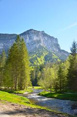 Pré de Saint-Même (Savoie / Chartreuse)
