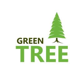 Pine vector icon