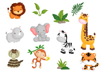 Jungle animal Vector set