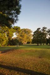 Seniors Playing Golf Autumn
