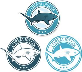 Vector shark logo illustration