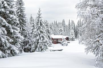 Scandinavian cottage in a winter snowdrifts 1
