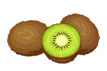 Kiwi fruits. Vector illustration.