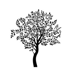 Tree black silhouette isolated on white