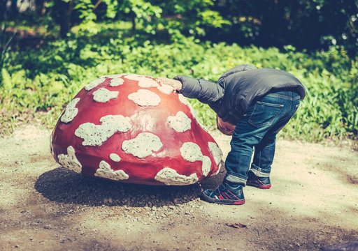 little kid searching for something under a mushroom