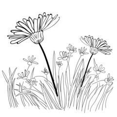 Illustration of grass and plant outlines