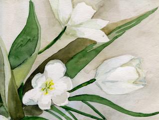 tulips_watercolor_handwork