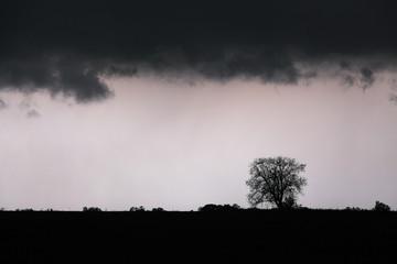Storm with lightning - landscape