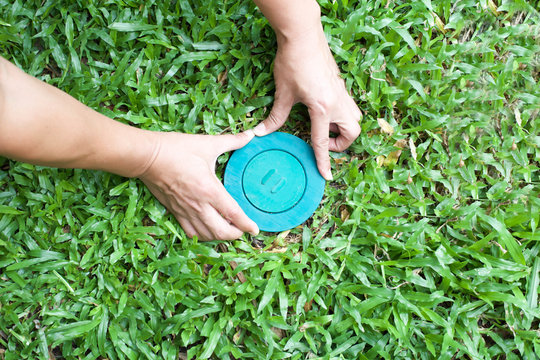 Pet control puttine Termite bait system in to the ground