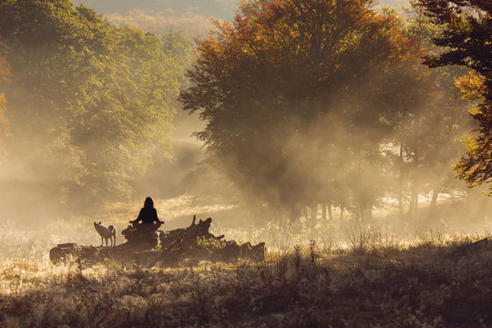 Silhouette of woman meditating in forest in a foggy morning