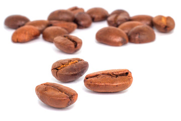 coffee arabica on white background