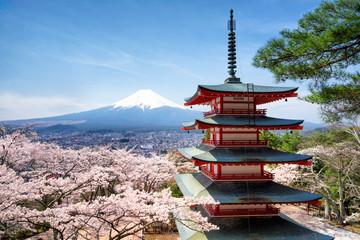 Photo sur Aluminium Tokyo Frühling und Sakura bei der Chureito Pagoda in Japan Fujiyoshida