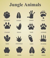 Set of jungle animal tracks
