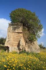 Tombs of the Kings Paphos, Cyprus. Beautiful spring landscape