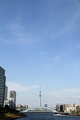 中央大橋から見た東京スカイツリー