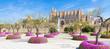 Mallorca Kathedral La Seu im Frühling