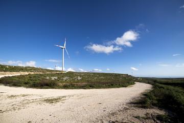 wind turbine to generate electricity