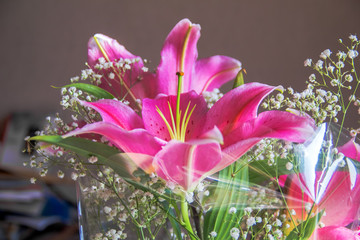 Beautiful blooming lily in bouquet