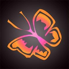 Papillon multi couleurs