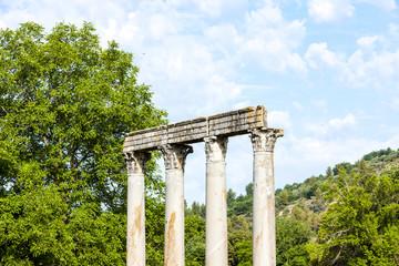 close up of Roman Temple, Riez, Provence-Alpes-Cote d''Azur, Fra