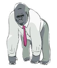 Clerk gorilla