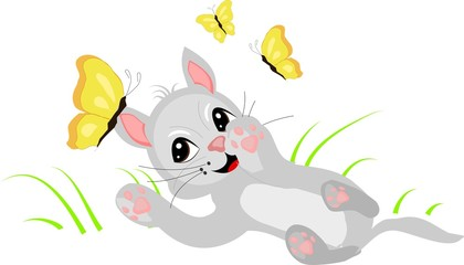 Cute kitten playing with butterflies