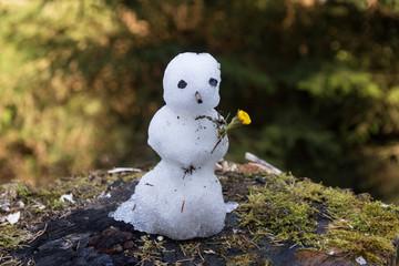Kleiner Schneemann mit Blume im Frühling
