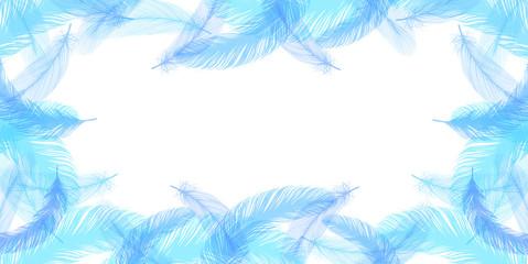 羽 羽根 背景