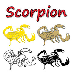 Vector scorpion isolated on white background