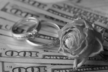 US dollar rose gift wedding gift money