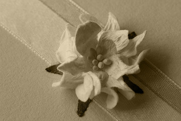 paper flower ribbon background