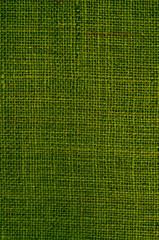 Freier Hintergrund, grün, Leinwand, vertikal