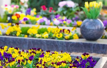 Frühling auf dem Friedhof