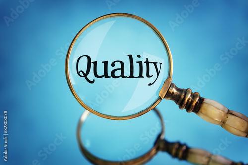 Software Qa Manager Resume Samples