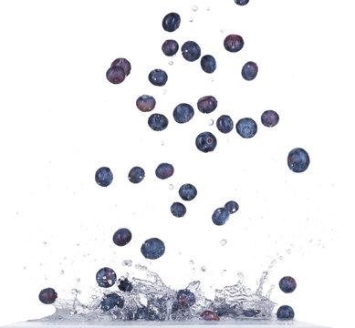 Blueberries in water splash on white backround