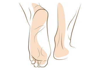 Woman foot sketch drawn in vector lines