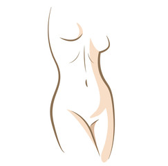 Close up woman body drawn in vector lines