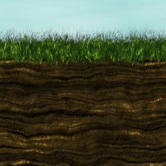 Grass with soil generated texture