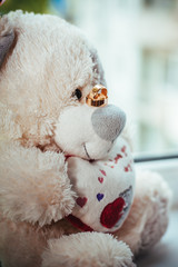Photo of teddy bear with wedding rings