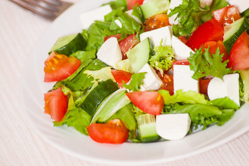 fresh vegetables salad with cheese