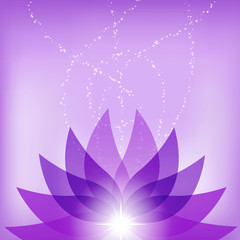 Vector Lotus Flower Illustration