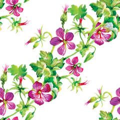 Wild flowers seamless pattern on white background