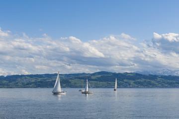Bodensee - Segeltörn