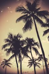 Retro Sepia Palm Trees