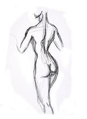 Woman torso Sketch